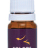 Colors for decoration Violet - 10ml